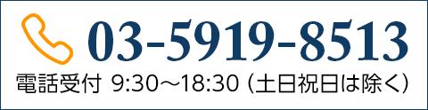 03-5919-8513